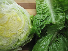 Iceberg and Romaine lettuce