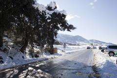 IMG_8109 (Miguel Angel Mora (GSi_PoweR)) Tags: espaa snow andaluca carretera nieve nevada sunday bosque granada costadelsol domingo maroma mlaga mountainroad meteorologa axarqua puertomontaa zafarraya sierraalmijara caosalcaiceria