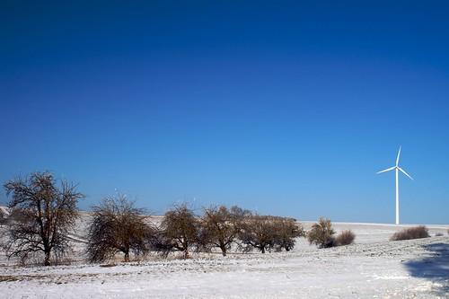 Bäume und Windrad