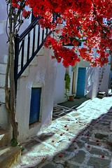 Alley with bougainvillea (Marite2007) Tags: blue red fab white streets architecture islands spring pretty day village details blossoms hellas bougainvillea greece paros cyclades alleys lanes naoussa coth superphotographer diamondclassphotographer flickrdiamond theunforgettablepictures rubyphotographer goldenheartaward