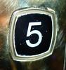 5 Year Flickrversary! (Brian Aslak) Tags: pet hotel flickr tallinn estonia lift 5 five anniversary elevator fem button flickrversary cinco cinque cinci knapp eesti heis cinq fünf vijf fimm viis viisi пять beş pięć penki pieci päť tallimat scandicpalace pesë ħamsa