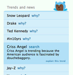 Brizzly explains Twitter trends