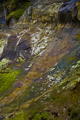 Colorful rock at Oswald State Park (brianzupunski) Tags: statepark park travel colors rock oregon state oswaldstatepark mentorseries oregonstatepark