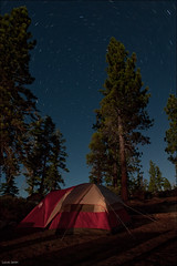 North Star and my tent (Lucas Janin | www.lucas3d.com) Tags: california longexposure blue camping red sky orange usa plant color tree night plante star iso200 nikon outdoor laketahoe tent explore ciel moonlight 24mm f80 nikkor campground insomnia nuit lightroom longueexposition insomnie nikond700 lucasjanin afsnikkor2470mmf28ged 6010sec