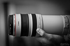 Canon's 100-400mm L lens