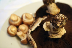 Thumbnail image for Double Mushroom Bread Pudding