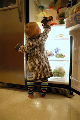 monkey in the fridge