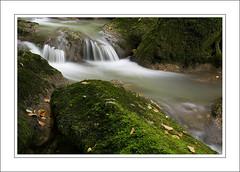 Filé Lison 4001 (Sequane25) Tags: nature water river eau riviere chute filé doubs lison pauselongue nanssoussainteanne