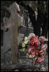 Des roses sur la croix (Sous l'Oeil de Sylvie) Tags: cemetery death october cross mort stgeorge octobre croix tombe beauce cimetière cancerdusein sensibilisation monumentfunéraire pieretombale