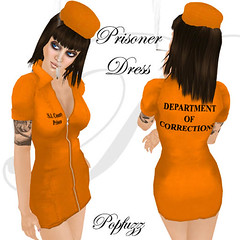 PopFuzz - Prisoner AD hat copy