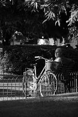 Toglietemi tutto, ma non la mia bici! (Oriana Milani (poco tempo)) Tags: street bw white black nikon bn bianco nero d80 neroamet