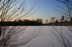 zugefroren (odyssey83) Tags: schnee winter snow ice pond eis weiher tmpel gewsser zugefroren icebound wahnerheide tongrubenweiher