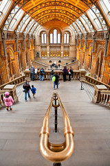 Museum of Natural History (Hadi Al-Sinan Photography) Tags: 2 london history museum canon photography natural mark south kingston ii 5d 2009 hadi 2470mm   alsinan