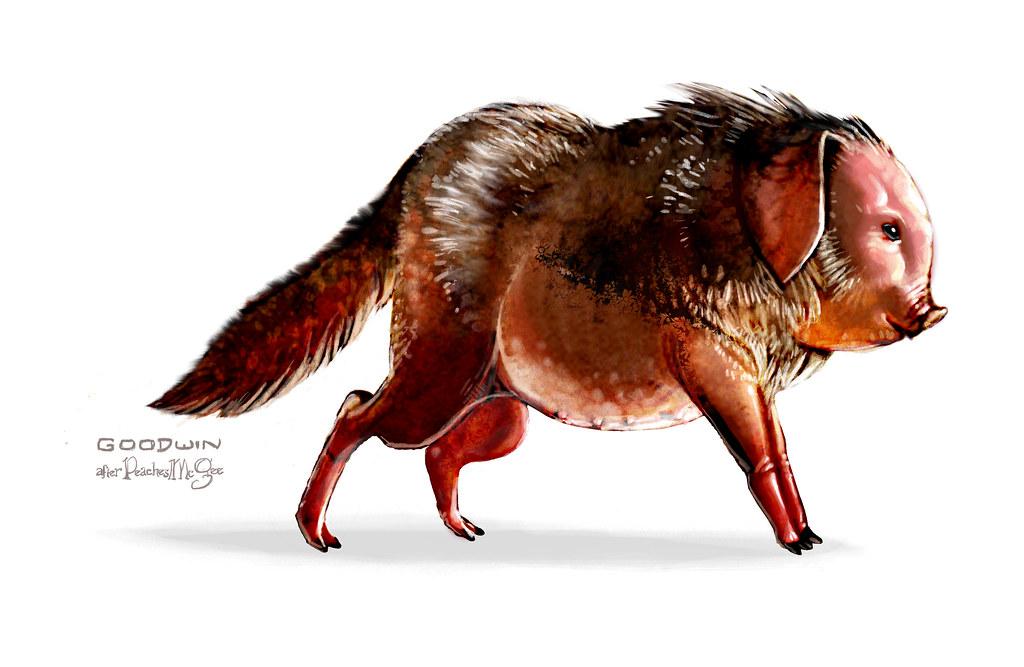 "Chris Goodwin Illustration: ""Wolf Pig"""
