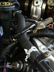 Head Gasket repair (clintwitherington) Tags: head repair gasket