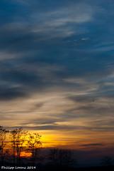 Shilouettes III (_Lawri_) Tags: blue trees sunset sky orange sun tree nature yellow clouds landscape nikon sonnenuntergang sundown cloudy himmel wolken sunny gelb blau tamron bodensee sonnig landschaft sonne bume cloudporn draussen sundowner shilouette wolkig lakeofconstance markdorf d80 deggenhausertal gehrenberg nikond80 linzgau autenweiler