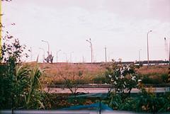 F1030002_lr (chi.ilpleut) Tags: kinmen taiwan island quemoy 2017 chinesenewyear lunar film expiredfilm kodakelitechrome100 iso100 crossprocessing 135mm 35mm analogue ilovefilms kodakfilm 底片 過期底片 柯達 記憶 蹤跡 金門鎏金之島kinmen 台灣 海島 島嶼 外島 回憶 走春 大晴天拍照天 晃晃 隨拍 我愛海 我愛草 我不在,就在去海邊的路上 海景 outing 冬陽 暖暖 暖陽 思念 漫步