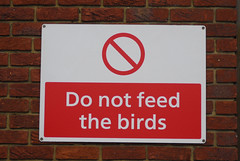 Heathrow - Do Not Feed The Birds