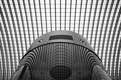 Robot (Philipp Klinger Photography) Tags: city roof santiago light shadow bw white distortion abstract black reflection glass lines station metal architecture modern train reflections robot nikon europe belgium belgique geometry railway bahnhof ceiling line calatrava round minimalism maas philipp spiegelung sigma1224mm luik santiagocalatrava meuse lige belgien wallonie benelux klinger lttich wallonia flickrshop guillemins d700 dcdead lidje vanagram