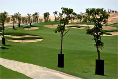 Tiger Woods Dubai, under construction (by: Tiger Woods Dubai)