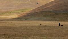 ....il silenzio.... (yude57) Tags: natura pace norcia pecore pastore silenzio castelluccio agricoltura