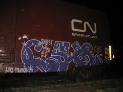 causr 08 (VANDAL TEAM SUPREME) Tags: train dp freight pz vts causr