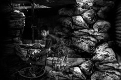 Smoky Mountain, Tondo, Manila - Sorting out of recycle items (Mio Cade) Tags: boy mountain youth kid garbage child philippines social rubbish manila smoky recycle issue item sort tondo