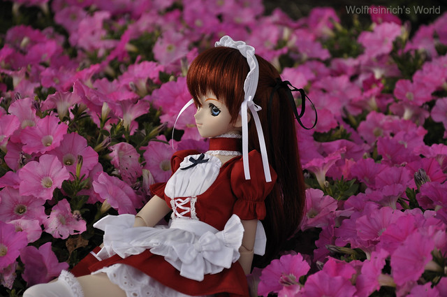Dollfie Dream Asuka アスカ with Pink Flower
