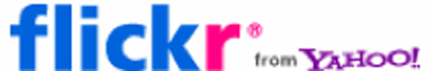 Did Flickr Add the Yahoo Bug to The Flickr Logo To Quell Rumors That Yahoo Was About to Pull the Plug on Flickr?
