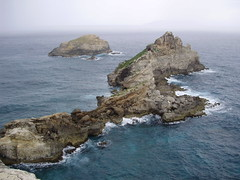 Guadalupa: Pointe des Chateaux