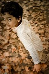 SAIF (irfan cheema...) Tags: china autumn pakistan boy portrait leaves kid eyes child shanghai son saif concordians irfancheema familygetty2010