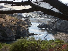 Point Lobos (mademcod) Tags: ocean clouds coast seascapes pacific bigsur pointlobos centralcaliforniacoast