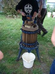 Pressing cider.