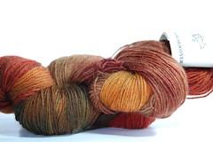 Kangaroo Dyer Mystery