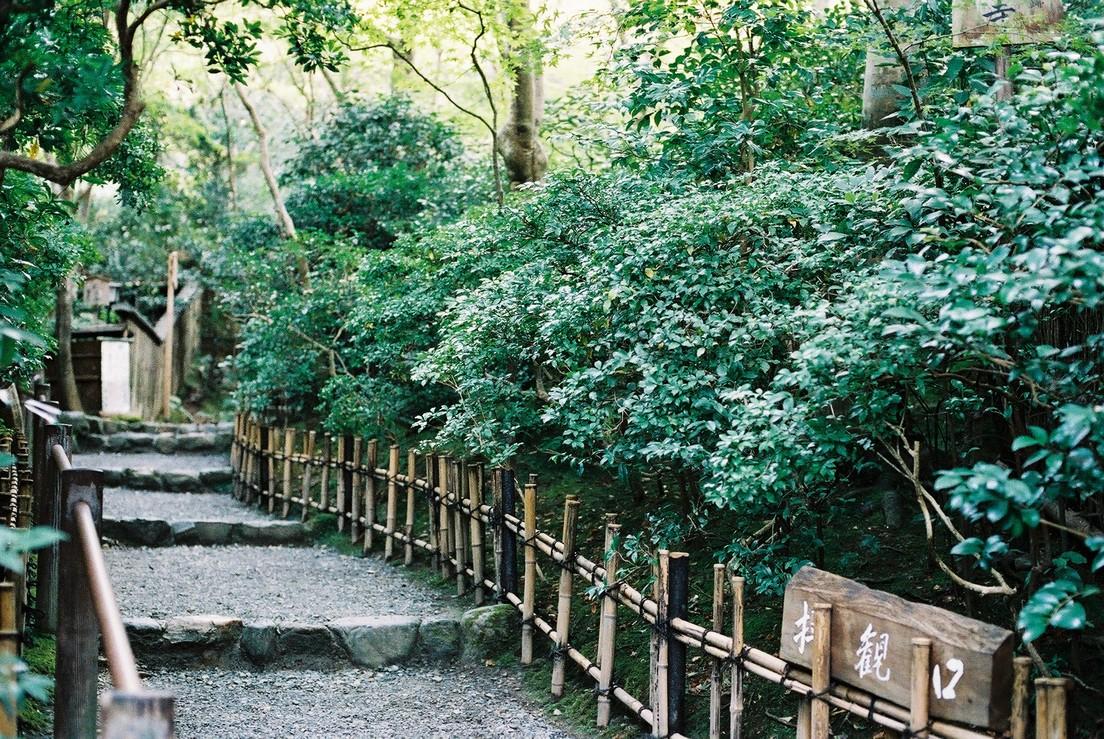 前往祇王寺的小小通道