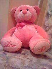 Pink teddy bear (Elysia in Wonderland) Tags: bear pink cute love me teddy newlook