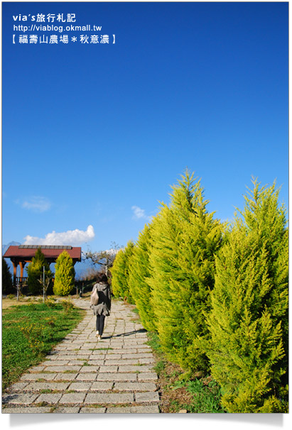 【中部旅遊景點】福壽山農場踏青去~
