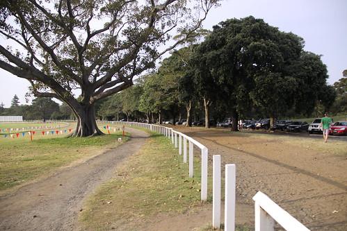 Half Marathon Centennial Park 041