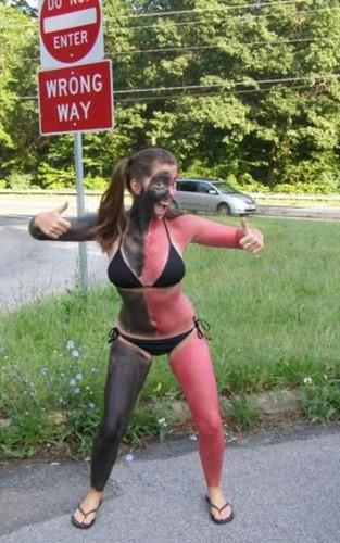 Wrong Way!