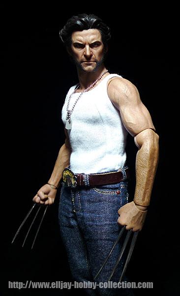 Wolverine (10)