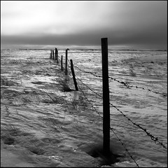 Deep Freeze (ecstaticist) Tags: light bw cloud white canada storm black field grass fence season square wire post wind low seasonal atmosphere blowing blow casio explore southern valley windswept bleak prairie saskatchewan prairies frontpage barbed atmospheric lumsden drift stubble fencepost gully coolie quappelle exp505