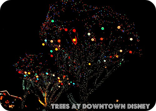 Trees at Downtown Disney, California