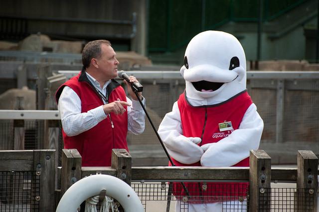 Bee Bop, Van Aqua's beluga mascot