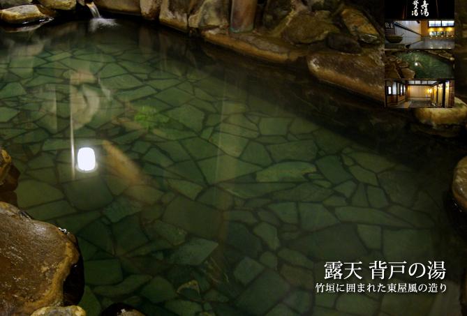 鳥取岩井屋溫泉1.JPG