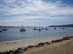 Shelter Island 2-24-2017 12-50-54 PM (walkingsandiego) Tags: shelterisland sandiego