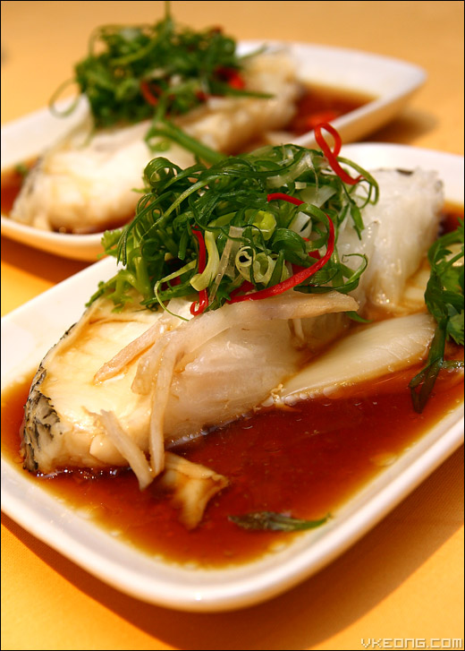 steamed-cod-fish