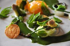 Hvide asparges med pocheret æggeblomme og skovmærkesauce