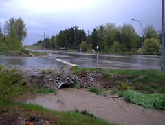(photo of polluted runoff from roadway)