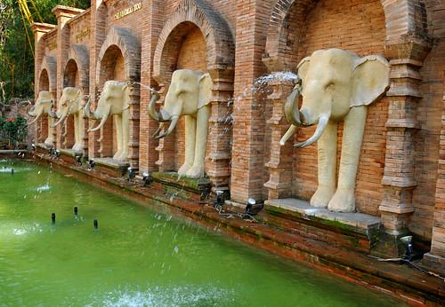 DGJ_4371 - Chiang Mai Aquarium and Zoo