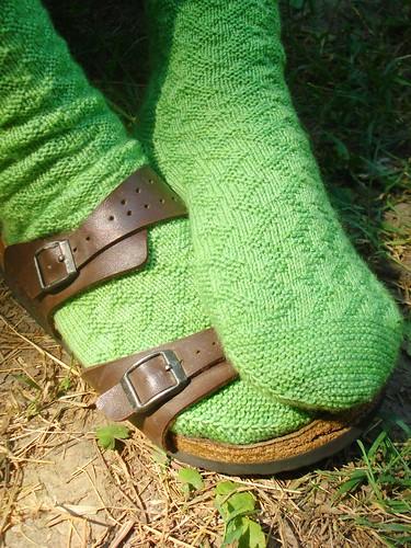 celery socks